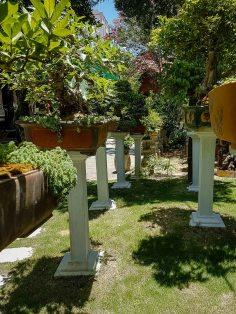 Ogród w Bonsai Homestay.